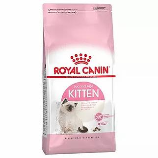 royal canin kitten.webp
