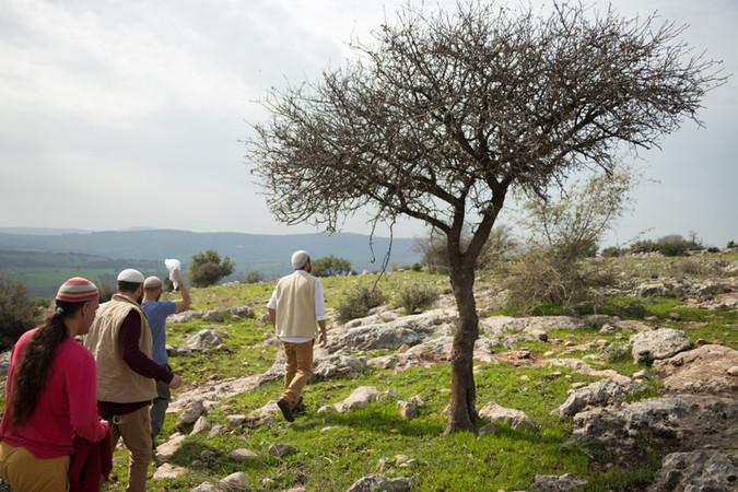 wedding photography in israel