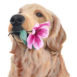 Golden Retriever Custom Portrait by Teresa Curella Art