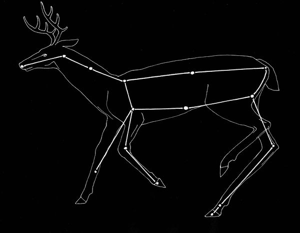 """The Stag is mentioned in the chapter """"Feet-Up"""" in the novel The Slouching Fields."""