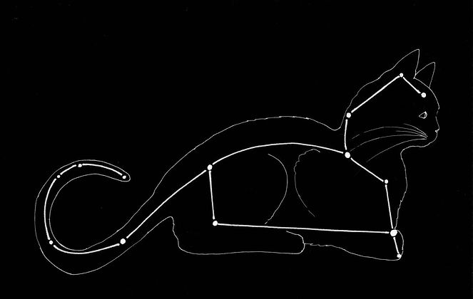 The Lying Cat is a star-form in the novel The Slouching Fields. It is similar to the constellation Leo.
