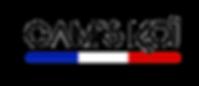 gams koi logo