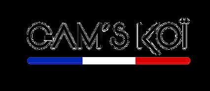 GAMS-KOI-TYPO-2019-++++.png