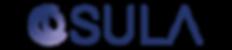 Logo_transparent_solo_dark@4x.png