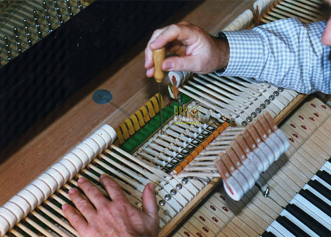 piano regulation.jpg