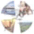 SMC Logo 2018 (L).png