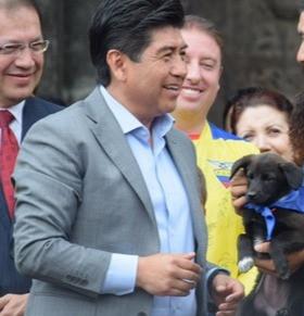El Concejo de Quito nos mintió ¿Yunda les regaló perritos para aprobar su plan inmobiliario?