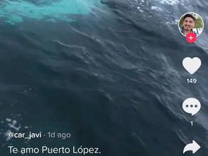 Las ballenas en Puerto López se acosan con la venia municipal