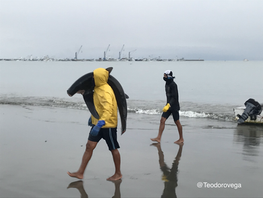 Crónica de una vergüenza nacional: tiburones y aleteo en la playa Tarqui, Manta