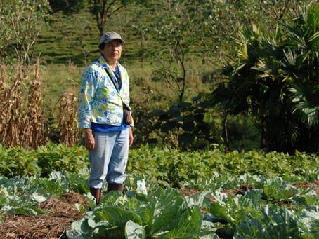 Agricultura y conservación en Galápagos: una sinergia impostergable
