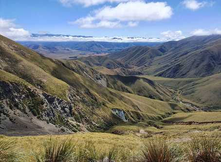 An unspoiled high country farm experience,  wonderful walk and a taste of history