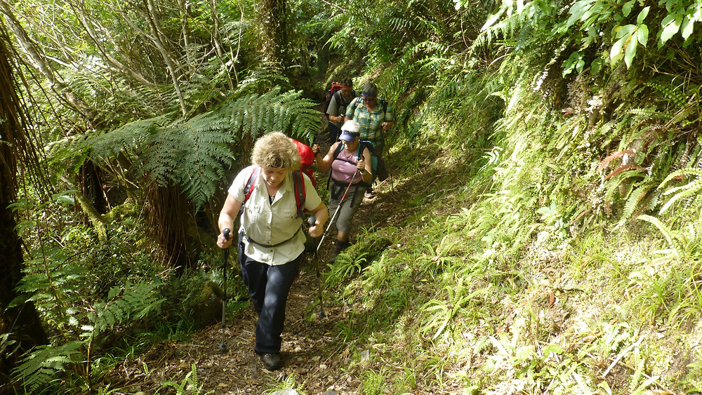 Women group hiking uphill