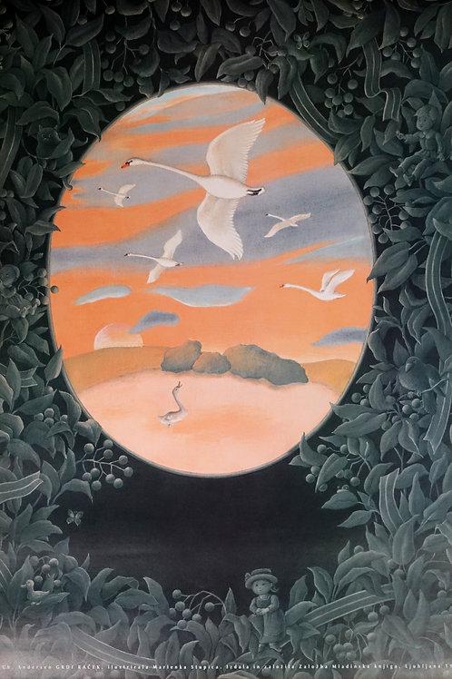 24. Marlenka Stupica: Hans Christian Andersen, Grdi raček