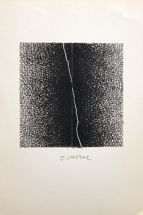Žarko Vrezec: Abstrakcija