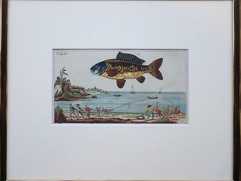 84. Baročni bakrorez z motivom ribe in ribiča