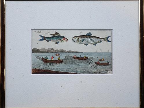 85. Baročni bakrorez z motivom dveh rib in ribičev