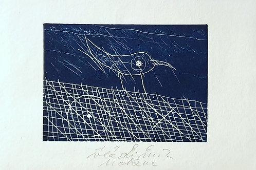 Vladimir Makuc: Ptica na ograji