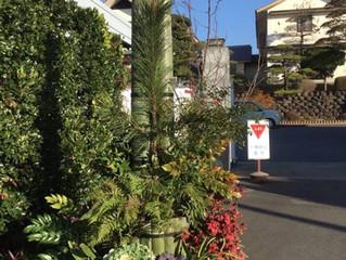 『九州道場の門松』