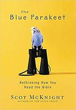 Blue Parakeet.jpg