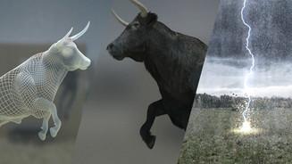 ECOSOL Bull