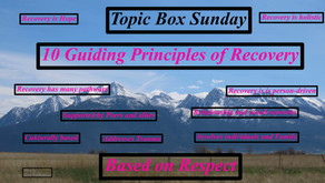 """TONIGHT Warriors for Life (WFL) """"Sunday Topic Box"""" with Rick - """"10 Guiding Principles of Recovery!"""""""