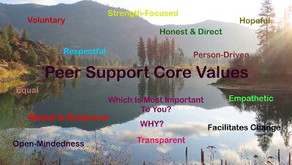 """TONIGHT """"Tuesday Topic Box"""" with Rick and Warriors for Life (WFL) — """"Peer Support Core Values!"""""""