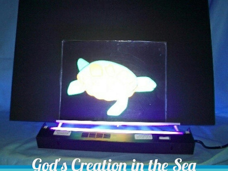 Our Blacklight Story Kits are a Customer Favorite!