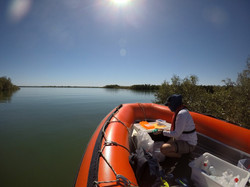 eDNA sampling in Exmouth Gulf, Western Australia. Photo credit Vinay Udyawer