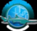 Global Sawfish Search Logo