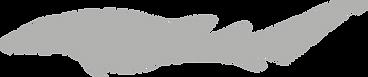 Ginglymostomatidae.grey.png