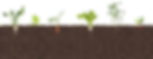 footer-bottom.png