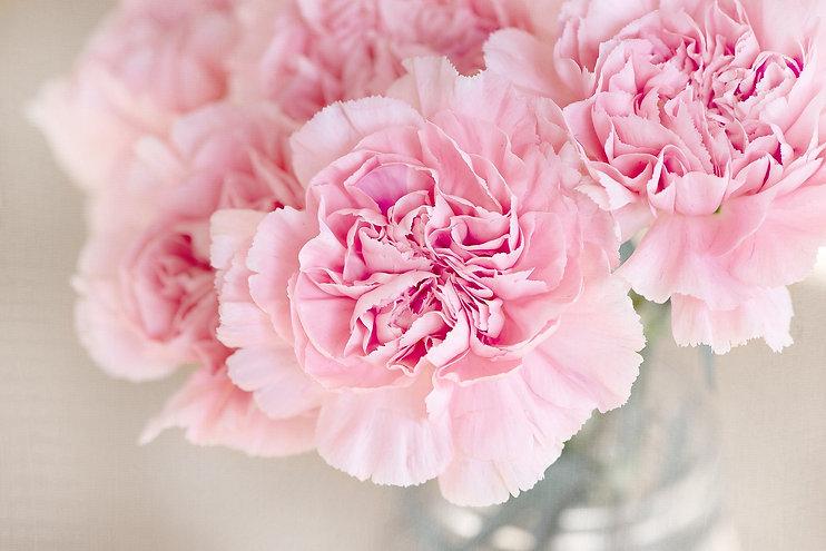 flowers-1325012_1920-1.jpg