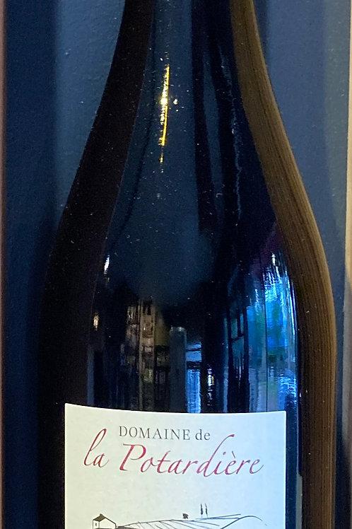 Cabernet Franc - Domaine La Potardière