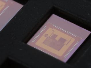 El primer micro-controlador libre Risc-v  del mundo llega a través de crowdfunding