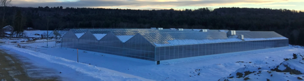 Heating a Greenhouse in the Winter