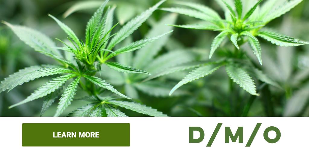 Marijuana Stock Database Tsx Listed Marijuana Stocks