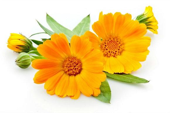 Calendule (plante séchée)