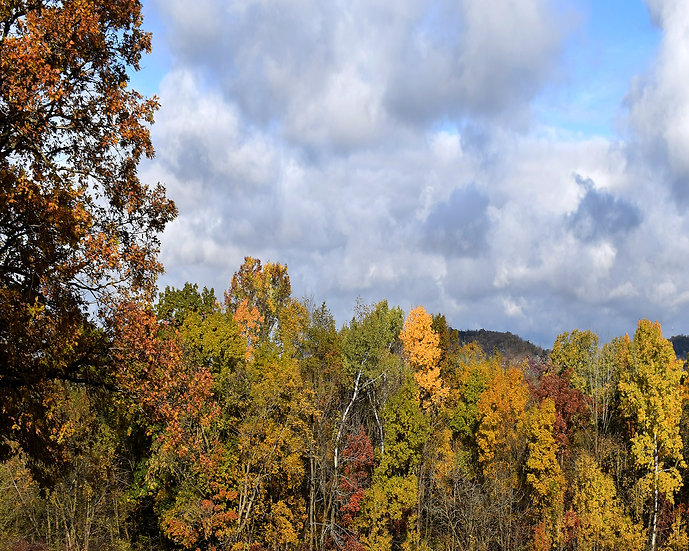 October Skyline