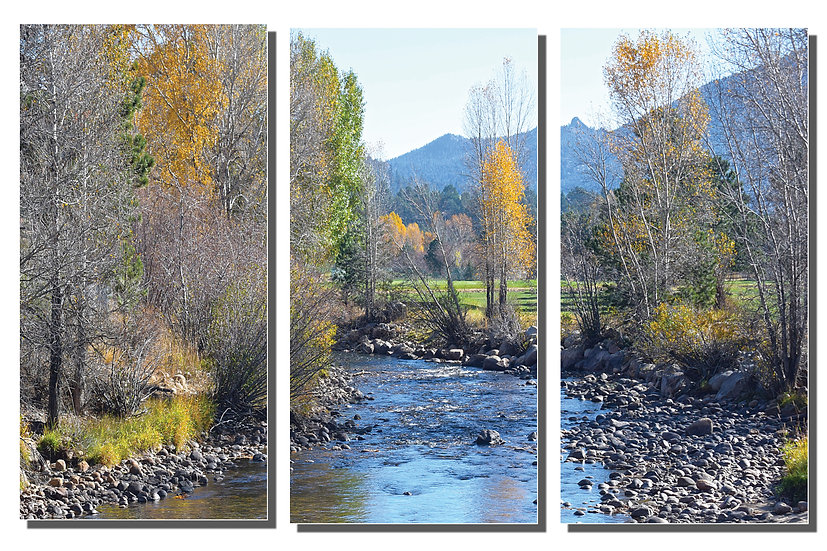 TRIPTYCH: Rivers Bend