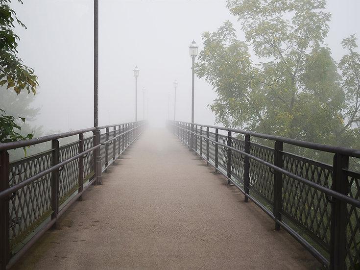 Veiled Walkway