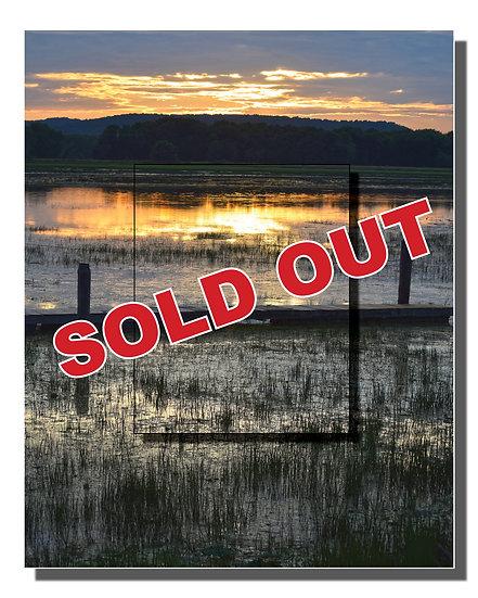 DOUBLE METAL: Silent Marsh