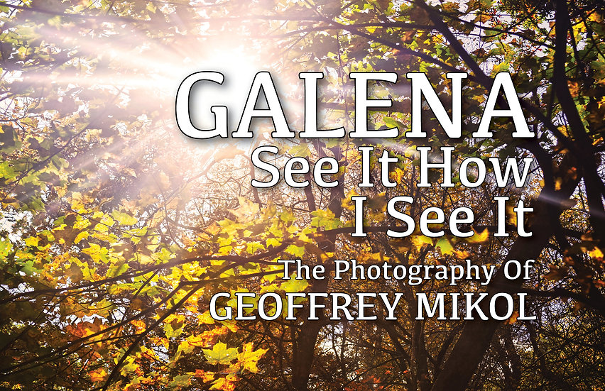 GALENA: See It How I See It