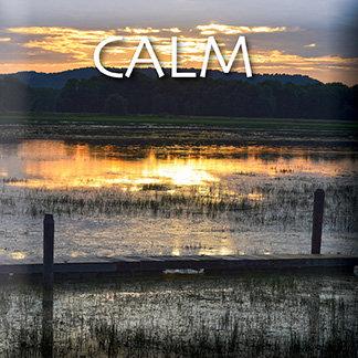 Inspire Tile: Silent Marsh