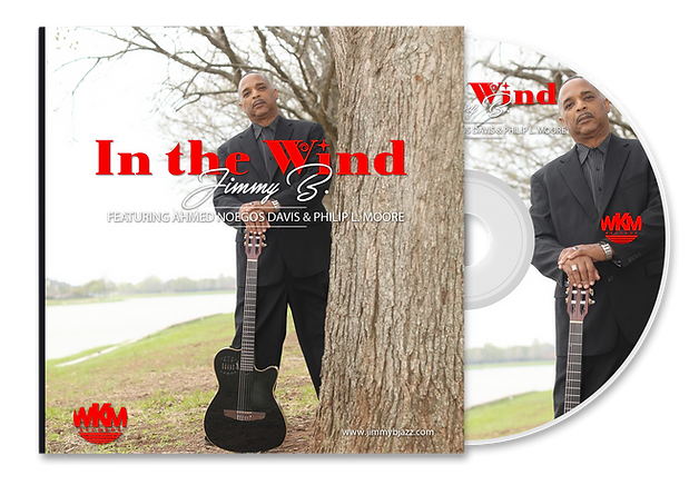IN THE WIND CD MOCKUP copy.png