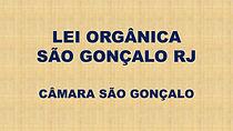 LEI ORGÃNICA.jpg