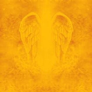 angel2_edited.jpg