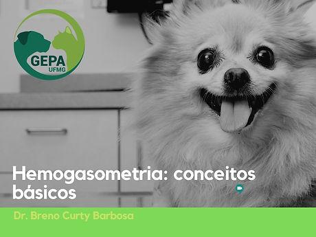 C%C3%83%C2%B3pia_de_C%C3%83%C2%B3pia_de_Grupo_de_estudos_em_pequenos_animais_convida__(1)_edited.jpg
