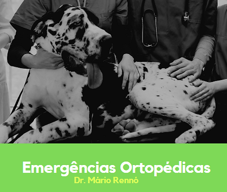 emergenciaorstopedicas.PNG