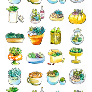 Succulentslargeprint.png