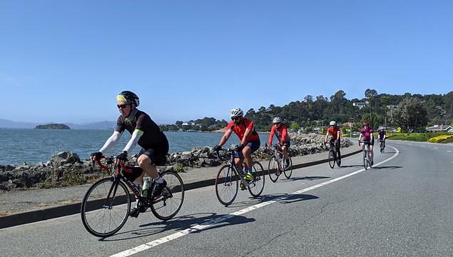Group ride circa cycling